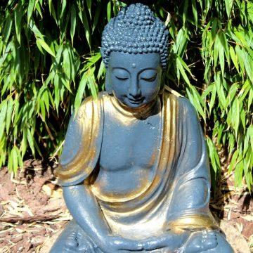 WLFT - Buddha