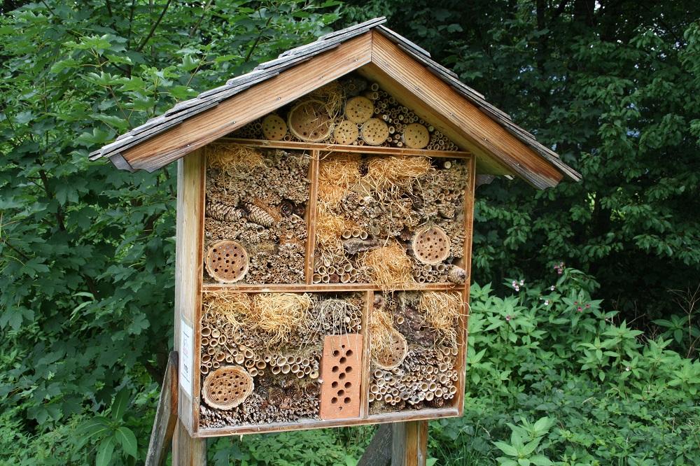 standort des insektenhotels garten wissen. Black Bedroom Furniture Sets. Home Design Ideas