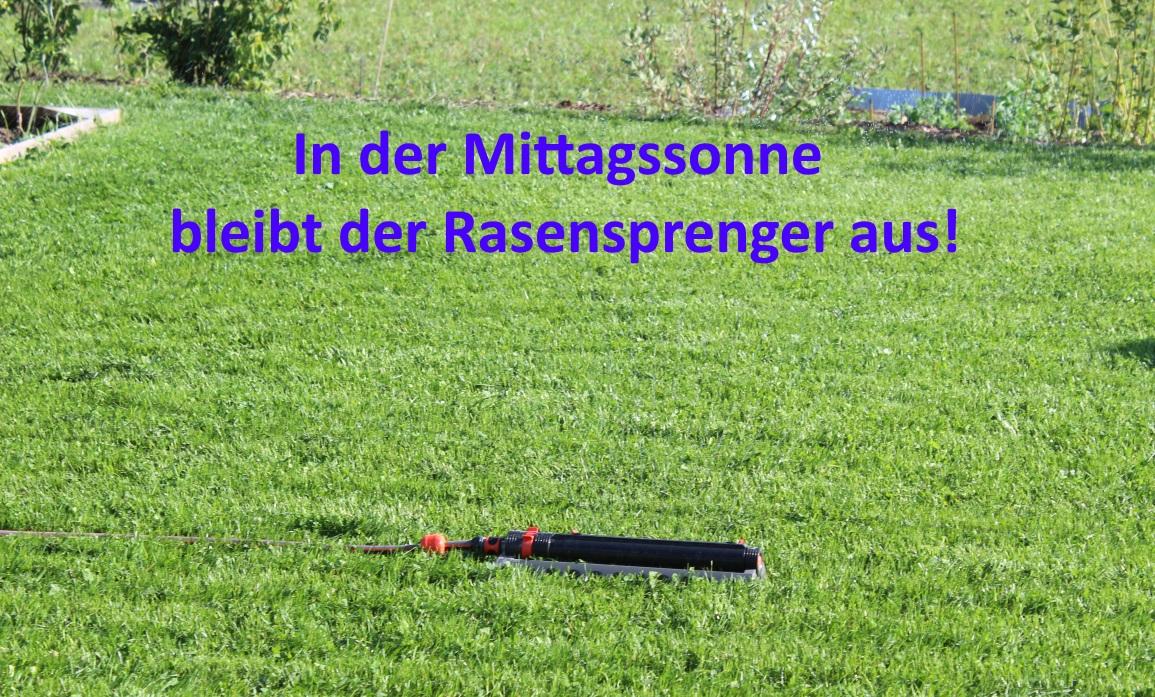 Rasen gießen in der Sonne nicht sinnvoll